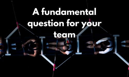 Team Coaching - A fundamental question for your team