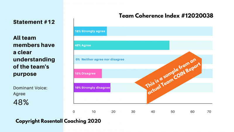 Rosentall Coaching Team Coherence Index Sample Report